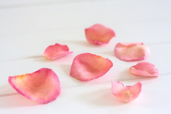 biodegradable confetti for weddings via http://etsy.me/2DoYtA5