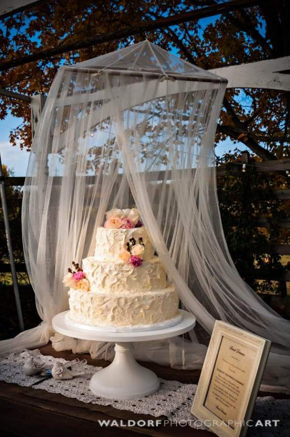 outdoor wedding cake table decorations how to protect wedding cake outdoors 18084
