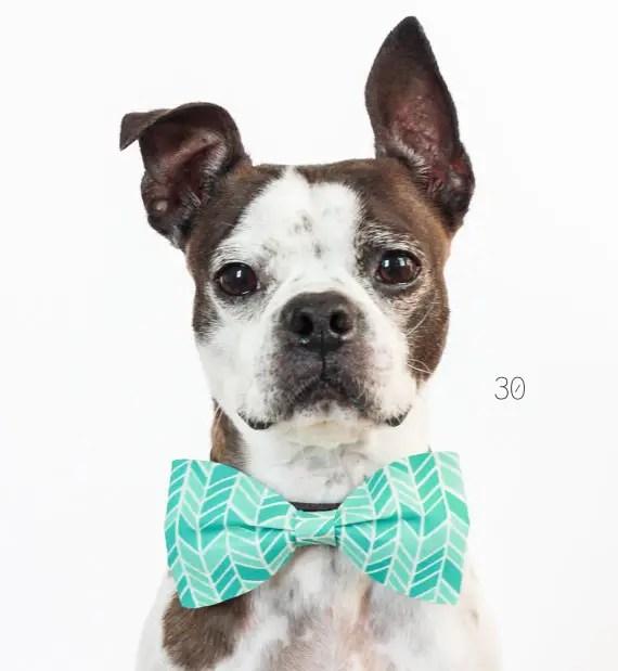 30 Amazing Geometric Wedding Ideas (via emmalinebride.com) - dog bow tie by little blue feathers