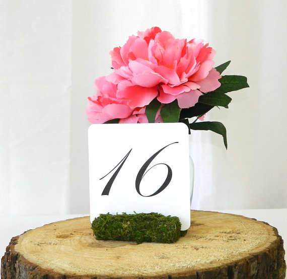 large moss table number holder