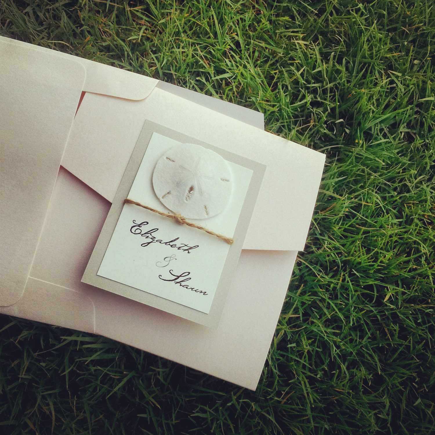 Plantable Wedding Invitations, Favors U0026 More