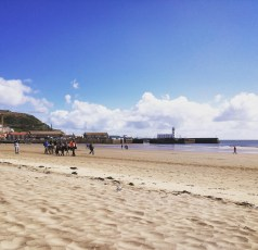 Donkeys on the beach at Scarborough