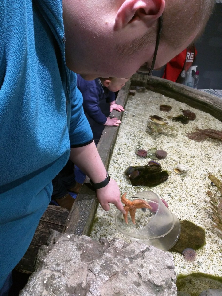Cameron stroking a starfish at the Sea Life Centre in Scarborough