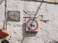 Donkey Road Signs, Fes Medina, Morocco