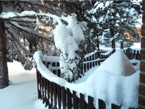 Snowed-in, Allentown, PA.
