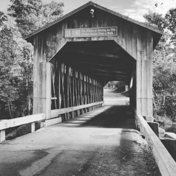 The Fallasburg Covered Bridge.