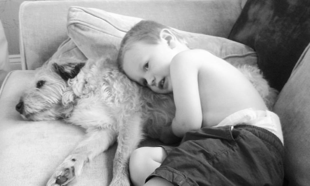 child and dog