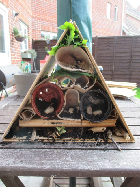 completed bughouse
