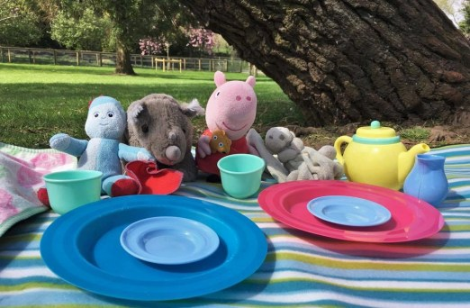 picnic plates in front of teddys