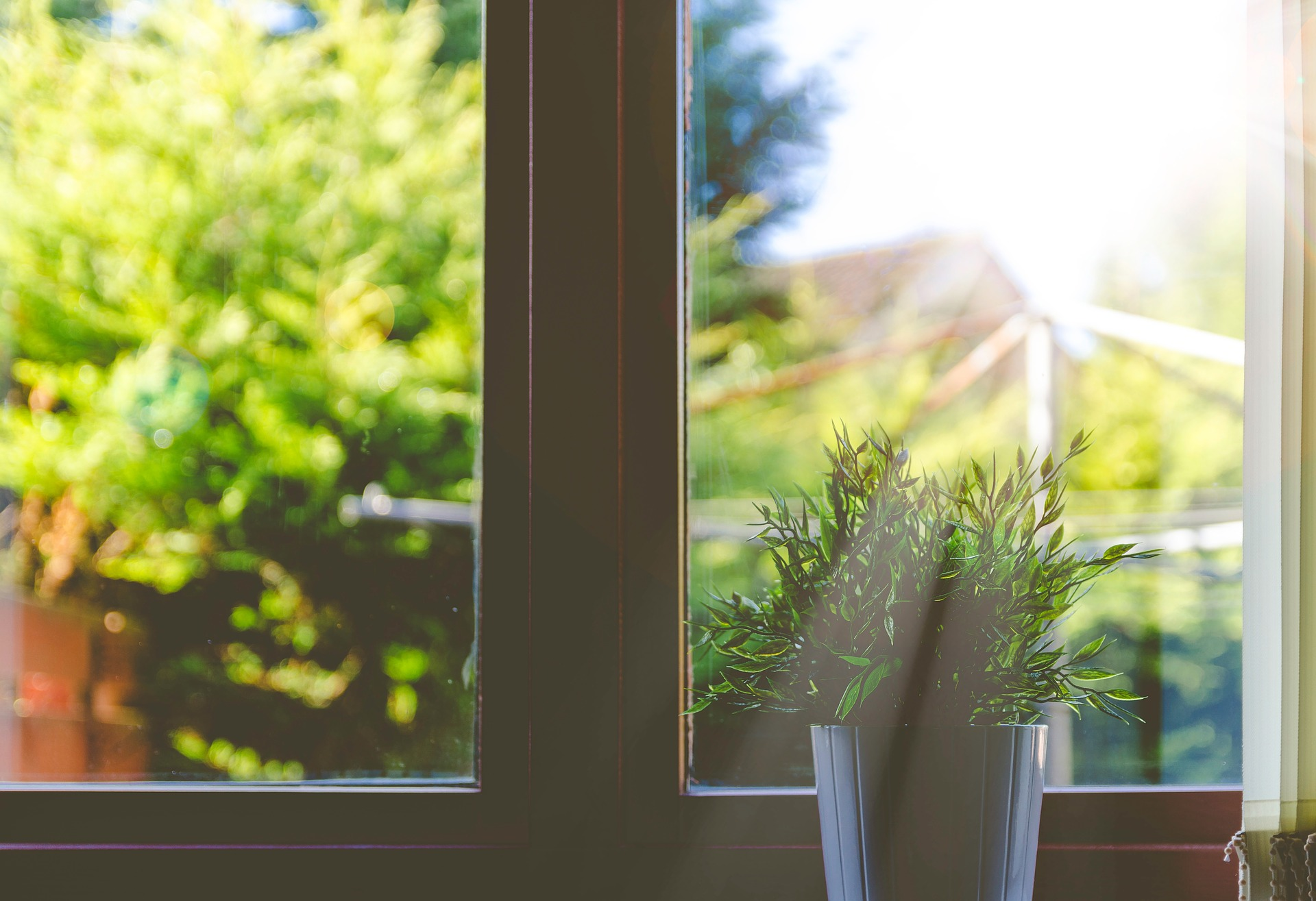 window with light pouring in and a plant pot on the sill