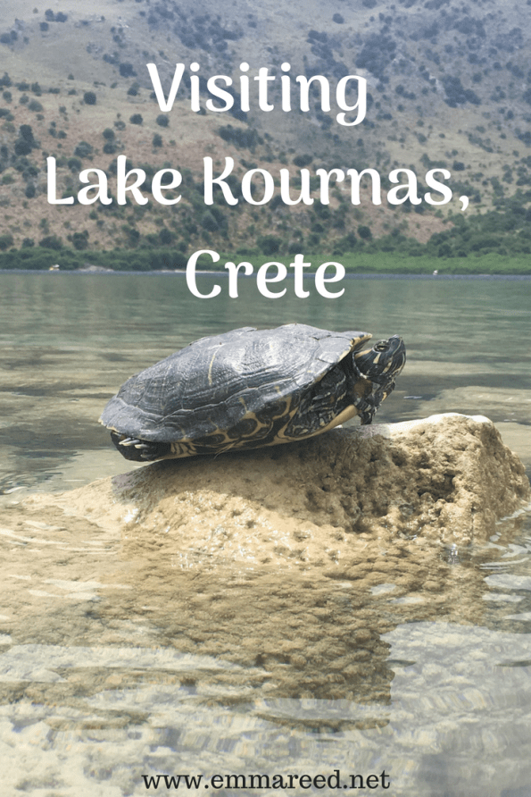 visiting Lake Kournas, Crete, terrapin sat on a rock