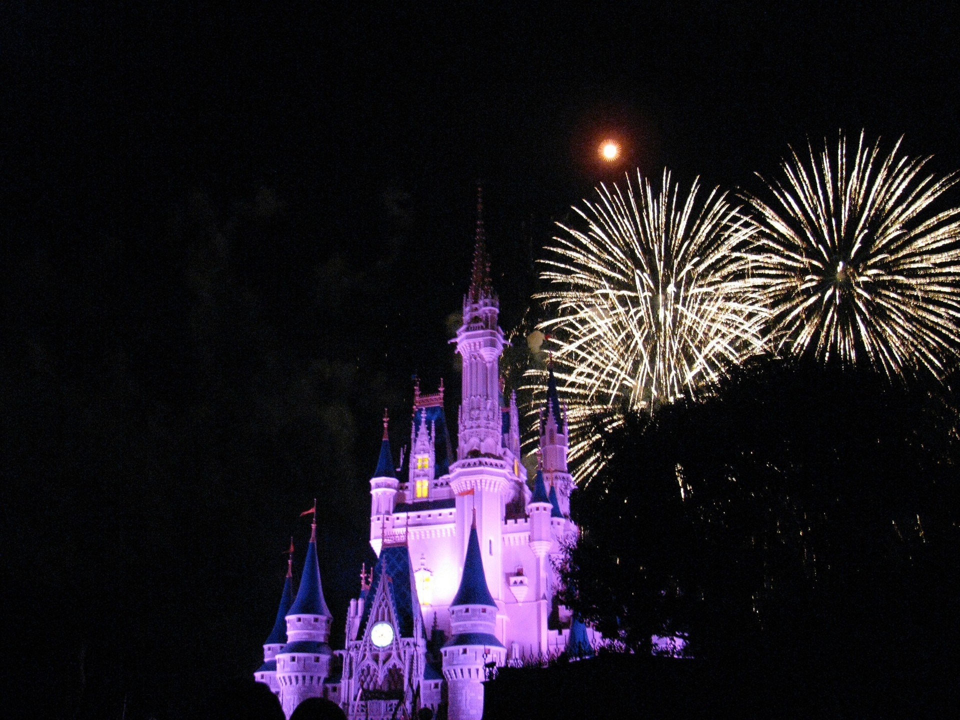 Disney World at night with fireworks