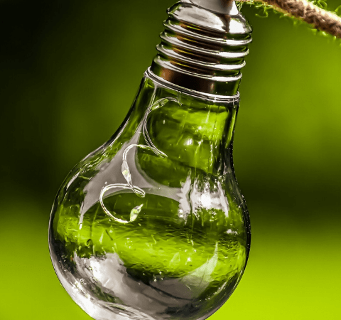 an eco light bulb