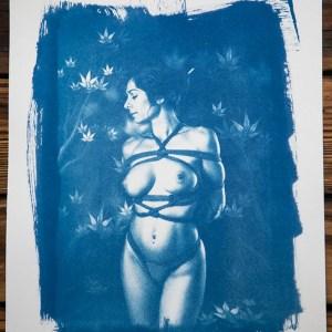 """Shibari : Cyanotype - Feuilles d'automne"""