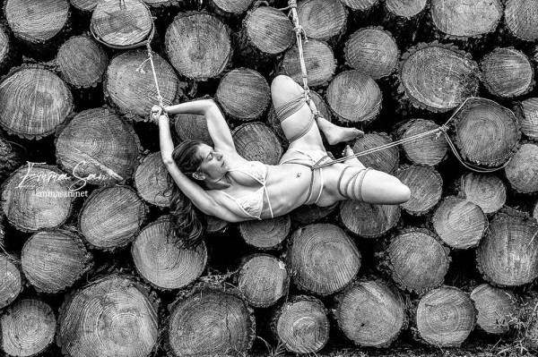 wood stack shibari