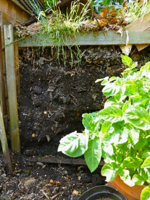 Compost prepared and Ready To Go! May 14.
