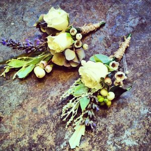 two_cream_yellow_buttonholes