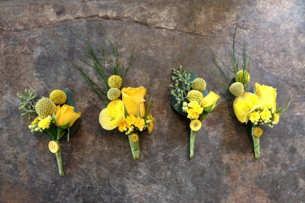 yellow_buttonholes