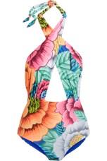 https://www.net-a-porter.com/gb/en/product/697944/Mara_Hoffman/printed-cutout-halterneck-swimsuit