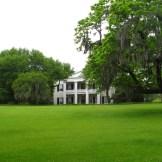 Southern Plantation -WIY