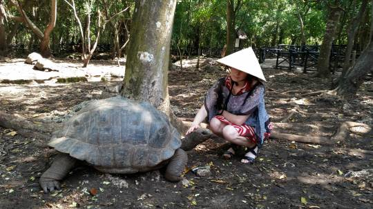 Emmily communes with tortoise