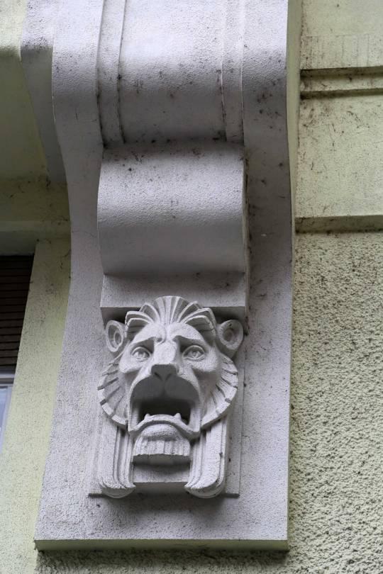 The-horrors-of-lionhood
