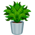 Potted Plant on Emojipedia 13.0