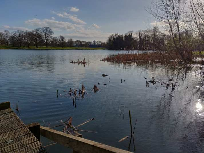 Riseholme Lake