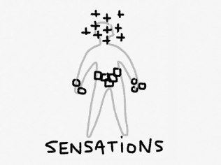 01-Sensation