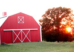 barns-n-sunsets