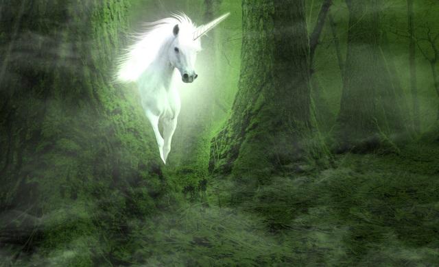 Unicorn-pic