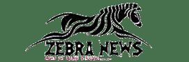 zebra-newslogo.png