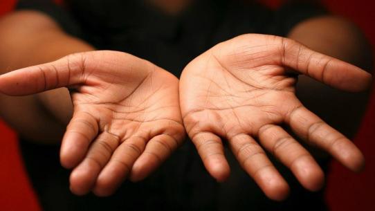 Risultati immagini per palmo della mano