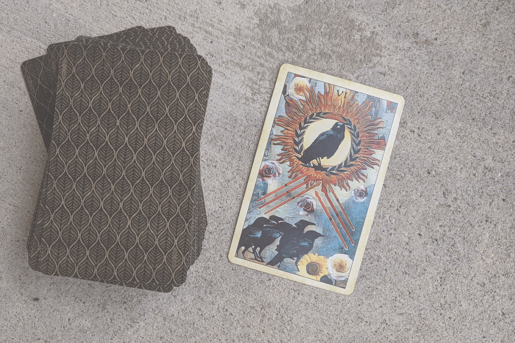 A deck of cards lays on the concrete with one card drawn and laying off to the side, a Six of Wands from the Crow Tarot deck.