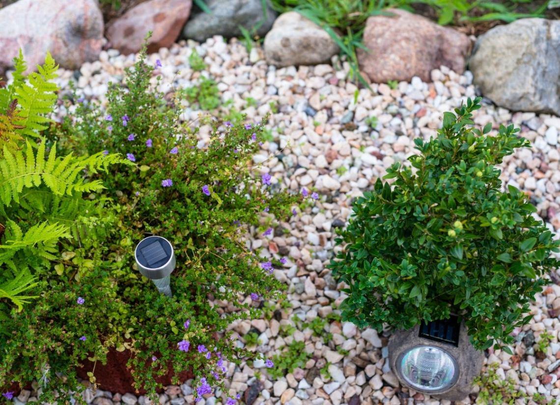 15 Gorgeous Rock Garden Ideas For Your Landscape Bob Vila