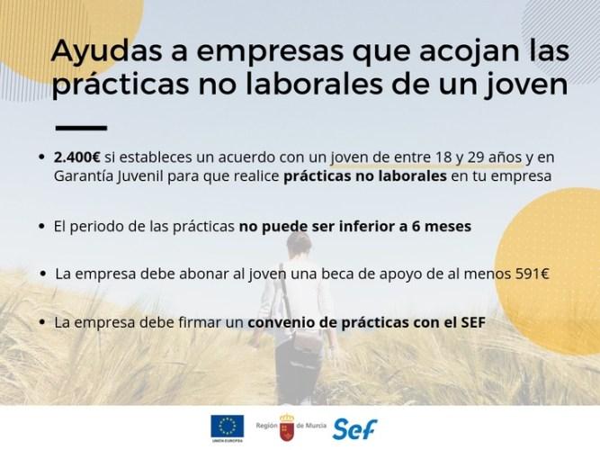 Ayudas de 2.400 euros para empresas que acojan prácticas no laborales de jóvenes.