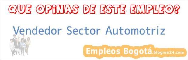 Vendedor Sector Automotriz