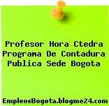 Profesor Hora Ctedra Programa De Contadura Publica Sede Bogota