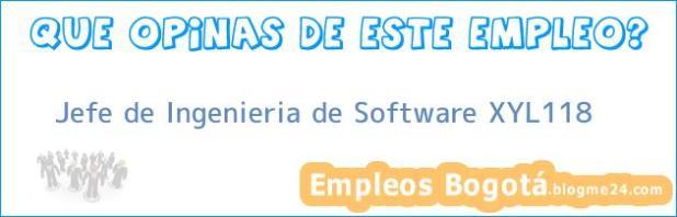 Jefe de Ingenieria de Software XYL118