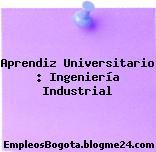 Aprendiz Universitario : Ingeniería Industrial