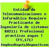 Entidad de Telecomunicaciones e Informática Requiere Practicante de Ingeniería de sistemas &8211; Profesional practicas pagas   (FV.171)