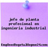 jefe de planta profesional en ingenieria industrial