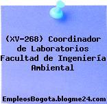 (XV-268) Coordinador de Laboratorios Facultad de Ingeniería Ambiental