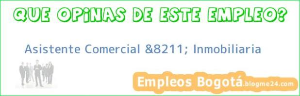 Asistente Comercial &8211; Inmobiliaria