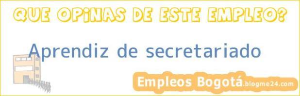 Aprendiz de secretariado