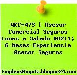WKC-473 | Asesor Comercial Seguros Lunes a Sabado &8211; 6 Meses Experiencia Asesor Seguros