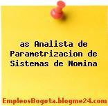 as Analista de Parametrizacion de Sistemas de Nomina