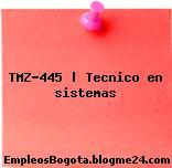 TMZ-445 | Tecnico en sistemas