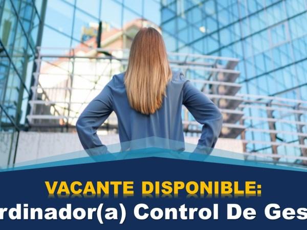 Coordinador(a) Control De Gestion
