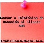 Gestor a Telefónico de Atención al Cliente 30h